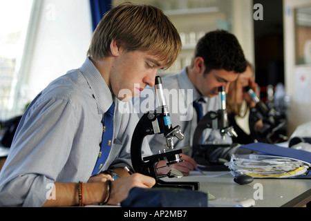 Male students in biology lesson at Colyton Grammar School in Devon UK - Stock Photo