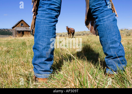 Cowboy boots, horse and barn, wildwest, Oregon, USA - Stock Photo