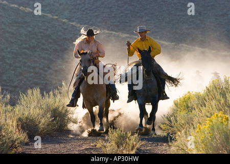 cowgirl and cowboy riding, Oregon, USA - Stock Photo