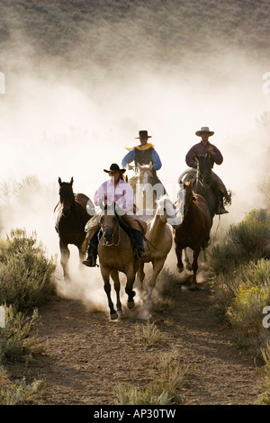 cowboys riding, Oregon, USA - Stock Photo