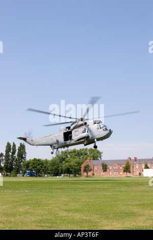 Sea king helicopter takes off from grassed field on a sunny day. - Stock Photo