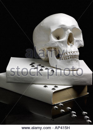 Human skull book and spiders - Stock Photo