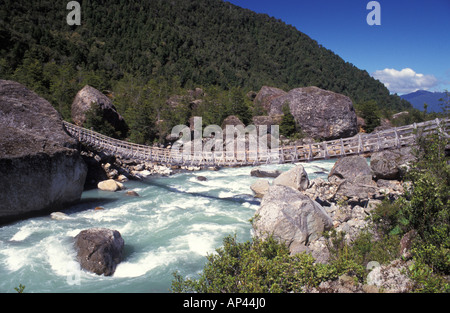 Chile, Patagonia, Queulat National Park. - Stock Photo