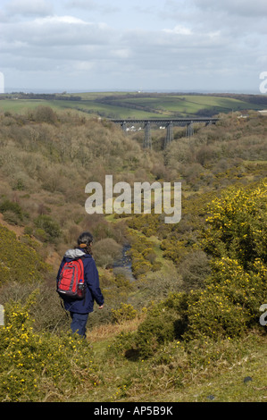 The formerMeldon railway viaduct in Dartmoor National Park Devon England now used as a cycle route - Stock Photo
