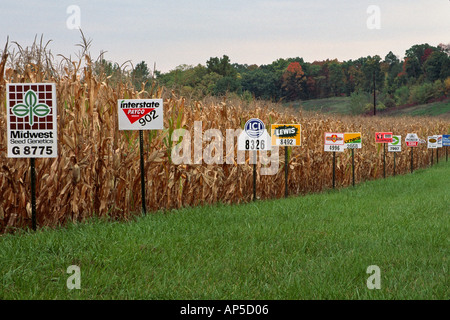 Test cornfield with corn seed brand signs identifying different seed strains Alexandria Missouri - Stock Photo