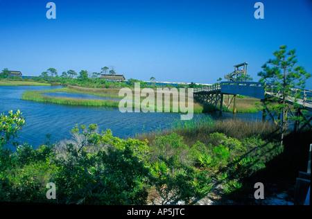 Florida, Pensacola, Big Lagoon SRA, boardwalk and picnic areas - Stock Photo