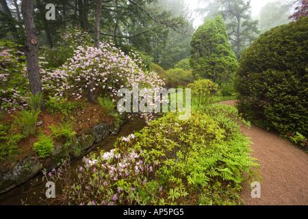Asticou Azalea Gardens in Northeast Harbor, Maine. Near Acadia National Park on Mt. Desert Island. - Stock Photo