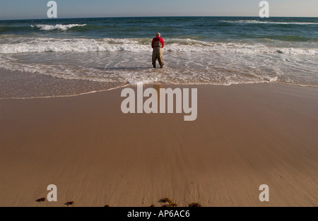 Montauk NY 051403 Surf Casters in Montauk Gordon M Grant Photo - Stock Photo