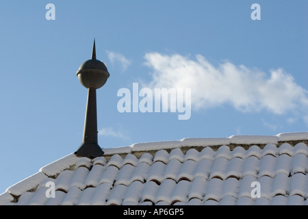 Rennaissance architectural feature of castle roof in winter - Stock Photo