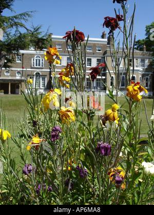 Templeton Estate on Priory Lane in Roehampton London England 2005 - Stock Photo