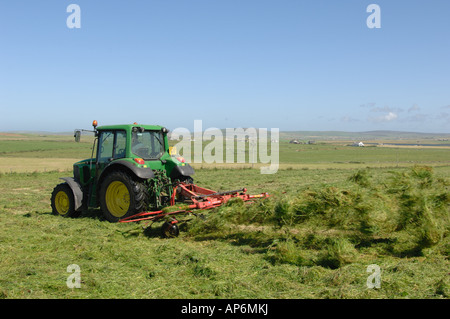 Tractor turning grass for hay making in field on Mainland Orkney Island Scotland - Stock Photo