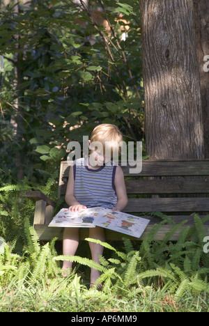 boy reading on wood bench surrounded by ferns under shady tree books reading learning outdoors wooden nature child - Stock Photo