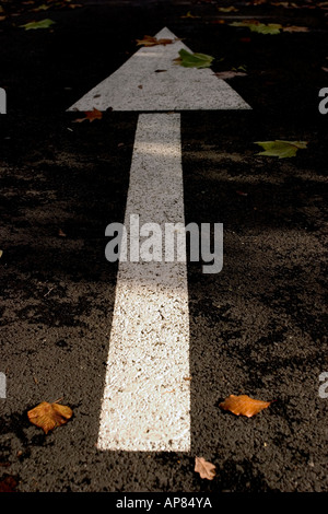 Directional signs paint on road outdoor with arrows pointing - Stock Photo
