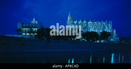 Trees in front of cathedral, Le Seu Cathedral, Palma de Majorca, Majorca, Balearic Islands, Spain - Stock Photo