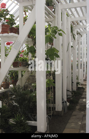 Traditional wooden greenhouse in the Old Town Museum Den Gamle By, Arhus Denmark - Stock Photo