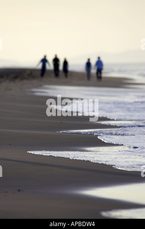 five person extended family and dog walking along the beach in the distance at sunset white rocks - Stock Photo