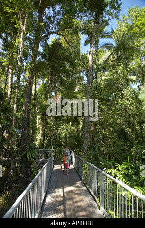 Family on Aerial Rainforest Canopy Walkway Daintree Discovery Centre Daintree National Park World Heritage Area - Stock Photo