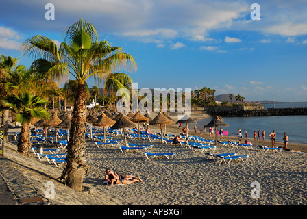 Soft afternoon sunshine by Playa de Camis n beach in Playa de las Am ricas Los Cristianos on Tenerife island Spain - Stock Photo