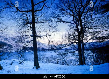 blue winter trees in snow panoramic ullswater lake district cumbria england uk - Stock Photo