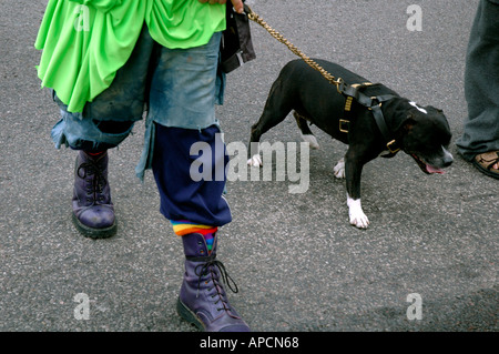 Man with Staffordshire terrier on chain lead - Stock Photo