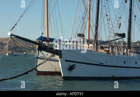 Sailing  yachts in San Francisco Bay tied up to a dock in Sausalito, California on San Francisco Bay - Stock Photo