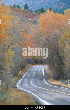 Fall colors on leaves on trees along rural two lane State Route highway 145 near Telluride Rocky Mountains Colorado - Stock Photo