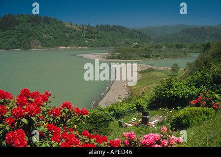 Red and pink Rhododendron flower bloom over small rural country cemetery above mouth of Klamath River California - Stock Photo