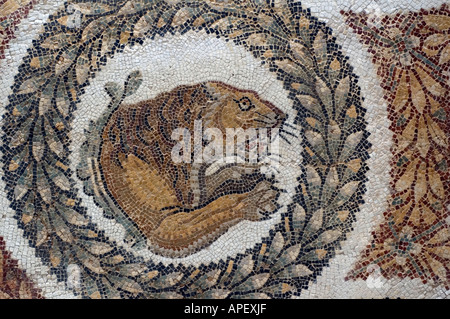 Art works in the museum of Bardo, in Tunis, Tunisia. Here is a a close-up photo of a Roman  mosaic showing a lion. - Stock Photo