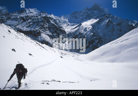 Trekking towards Annapurna Sanctuary Base Camp Nepal Himalayas with sacred Machhapuchhare Fish Tail mountain 6997m - Stock Photo