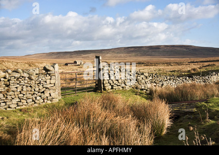 Abandoned farmhouse, Arkengarthdale, North Yorkshire - Stock Photo