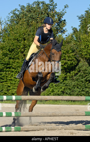 Young rider jumping on back of an 'American Standard Bred' horse - Stock Photo
