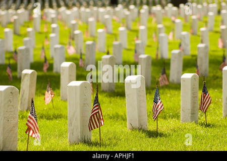 Rows of headstones with american flags in Arlington National Cemetery on Memorial Day. Close up long view shallow - Stock Photo