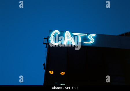 Cats musical at the New London Theatre Drury Lane London England Last performance of Cats at this theatre was in - Stock Photo