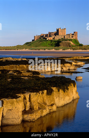 Bamburgh Castle and beach in late evening summer sunshine, Northumberland - Stock Photo