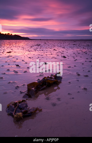 Pink skies over Strangford Lough Estuary Newtownards County Down Northern Ireland - Stock Photo