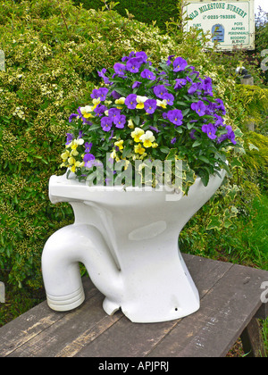 Amusing and novel floral container outside a plant nursery in Wiltshire England UK EU - Stock Photo