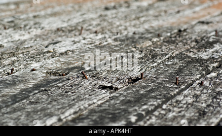 old rotting planks or floorboards with rusty nails - Stock Photo