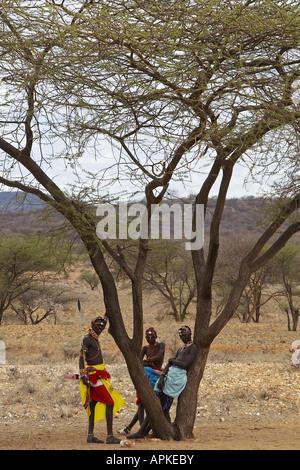 three Samburu warriors standing under a tree, Kenya, Samburu National Reserve, Isiolo - Stock Photo