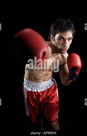 Boxer man exercising - Stock Photo