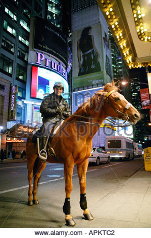 Policeman on horse back. (NYC, New York, USA) - Stock Photo