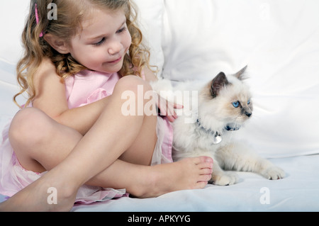Little girl playing with siamesse kitten - Stock Photo
