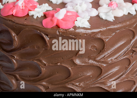 Chocolate cake (close-up) - Stock Photo