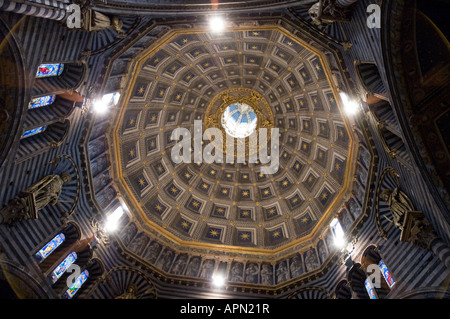 Looking up to the inside of the dome in the Cattedrale dell'Assunta (the Cathedral of Saint Mary of the Assumption - Stock Photo