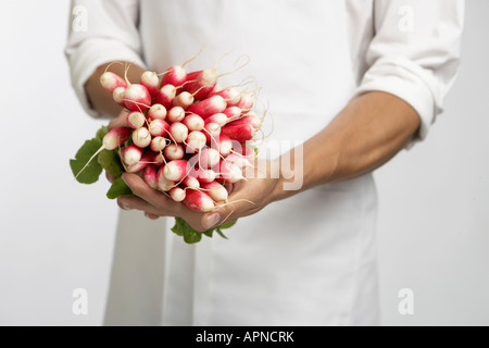 Chef holding bunch of radishes (mid section)