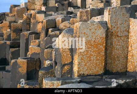 Basalt Columns at Giants Causeway Northern Ireland