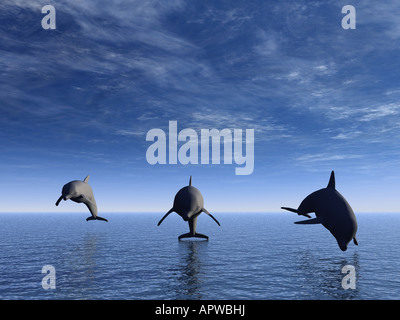 Three dolphins floating at ocean view in front - Stock Photo