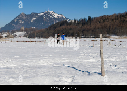 Winter landscape and Gruenten Mountain peak, between Altstaedten and Fischen Oberallgaeu Bavaria Germany - Stock Photo