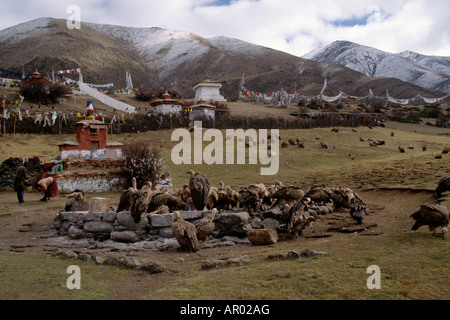 The human dead are ceremonially cut up fed to the VULTURES by monks at the SKY BURIAL GROUNDS DRIGUNG MONASTERY - Stock Photo