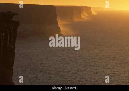 Nullabor cliffs in the evening, Great Australian Bight, Nullarbor, Bunda Cliffs, Eyre Highway, South Australia, - Stock Photo