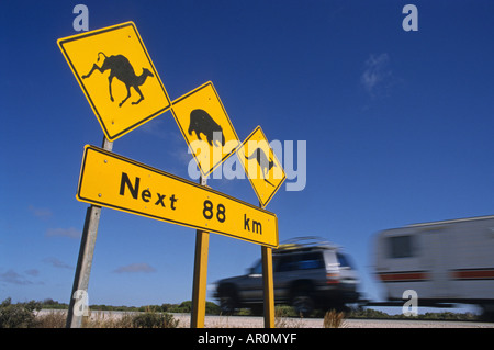 Outback highway sign warning camels, wombats and kangaroos might be on the road, Queensland, Australia - Stock Photo